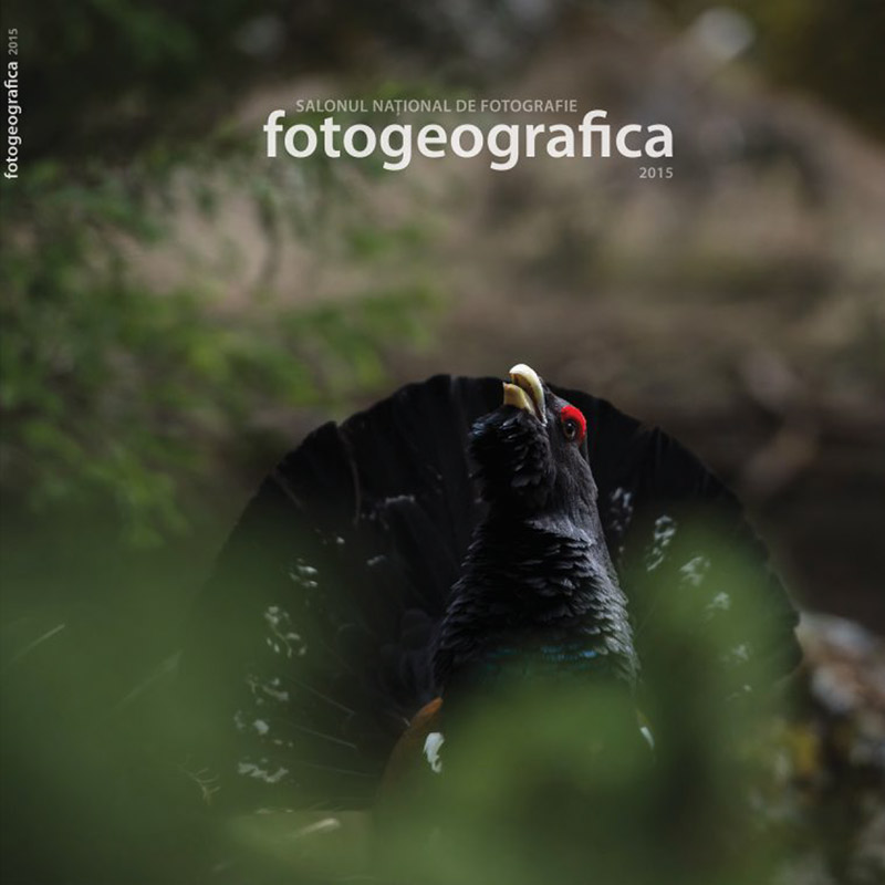 cover-fotogeografica-2015