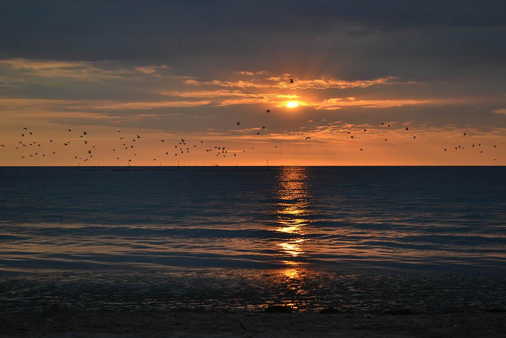 004.2. Gagea Gabriela. Rasarit pe plaja (Marea Neagra)