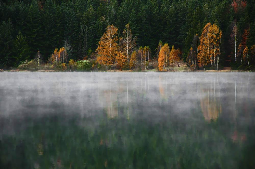 008.1. Nichita Andrei.  Lacul Sf. Ana (Baile Tusnad)