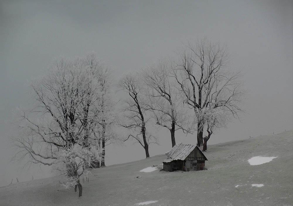 010.2. Badut Anca. Cibiana (Muntii Cibin, Sibiu)