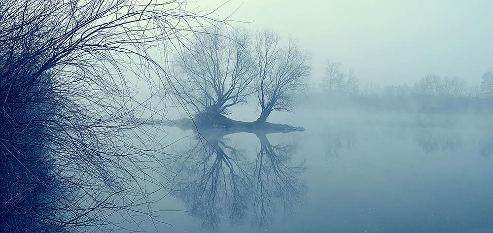 021.1. Antonie Bogdan Silviu. Sunt ceata de primâvarâ (Valea Muresului si Dealurile Lipovei -Radna, Jud. Arad)