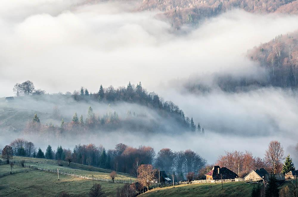 026.1. Adiana Zot. Dimineti in ceata (Sirnea, jud. Brasov)