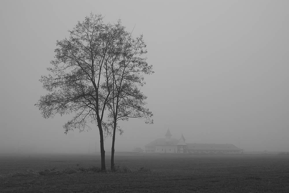 030.1. Cirja Ionut.Schitul (Braniste, Targu Neamt)
