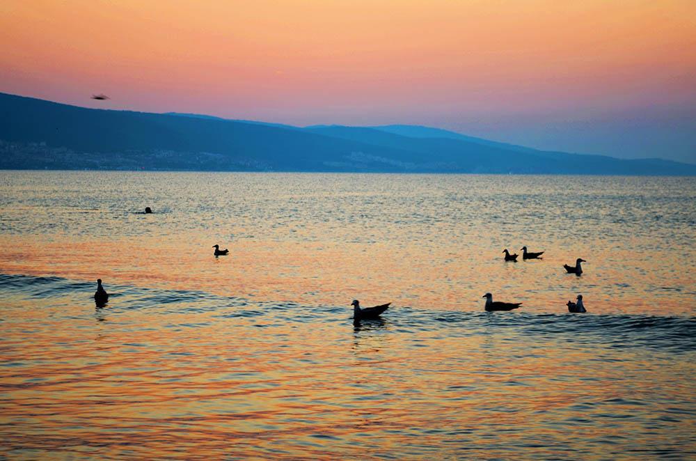 047.2. Gilcescu Ama Maria. Dis-de-dimineata (Sunny Beach, Bulgaria)