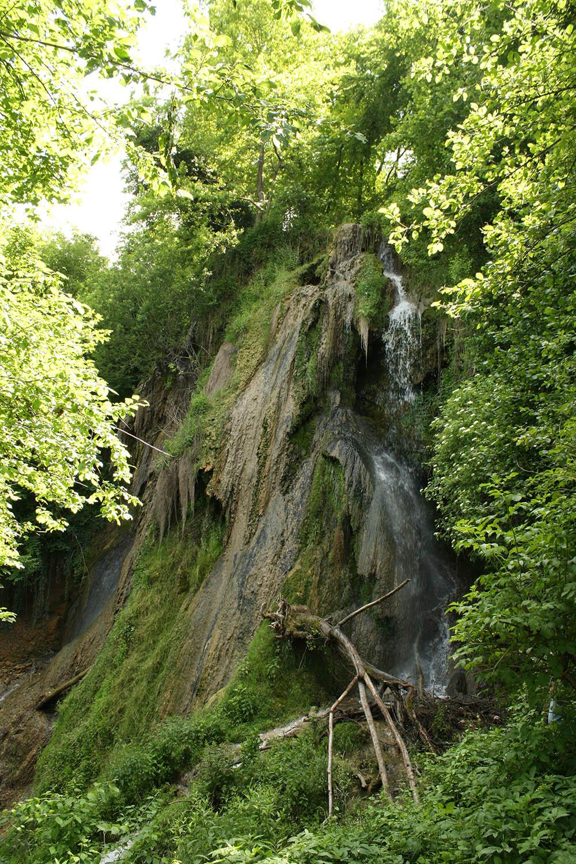 059.3. Repede Camelia. Cascada nimanui Geoagiu Bai, Hunedoara)