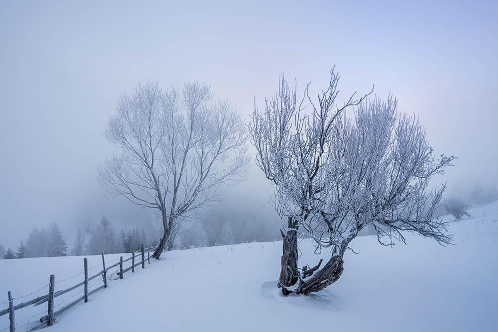074.1. Nicula Dorian Cristian. Rasarit prin ceata (Pestera, Brasov)