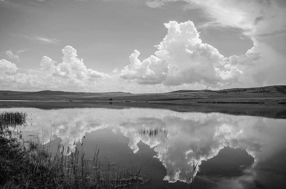 078.3. PUteanu Robert. Reflexiv (Lacul Horia, jud Tulcea)