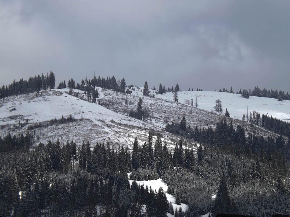 101.2. Putura Adrian. Peisaj alpin (Vatra Dornei)