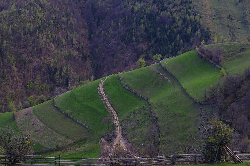 110.2. Ciocnadi Bogdan Alexandru. Drumul (Someșul Rece, jud.Cluj)
