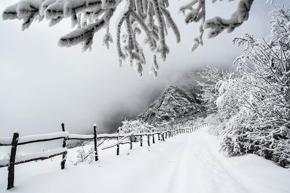 128.3. Gligor Horia Mihai. Căutând iarna prin Apusen ((Buceș Vulcan, jud. Hunedoara)
