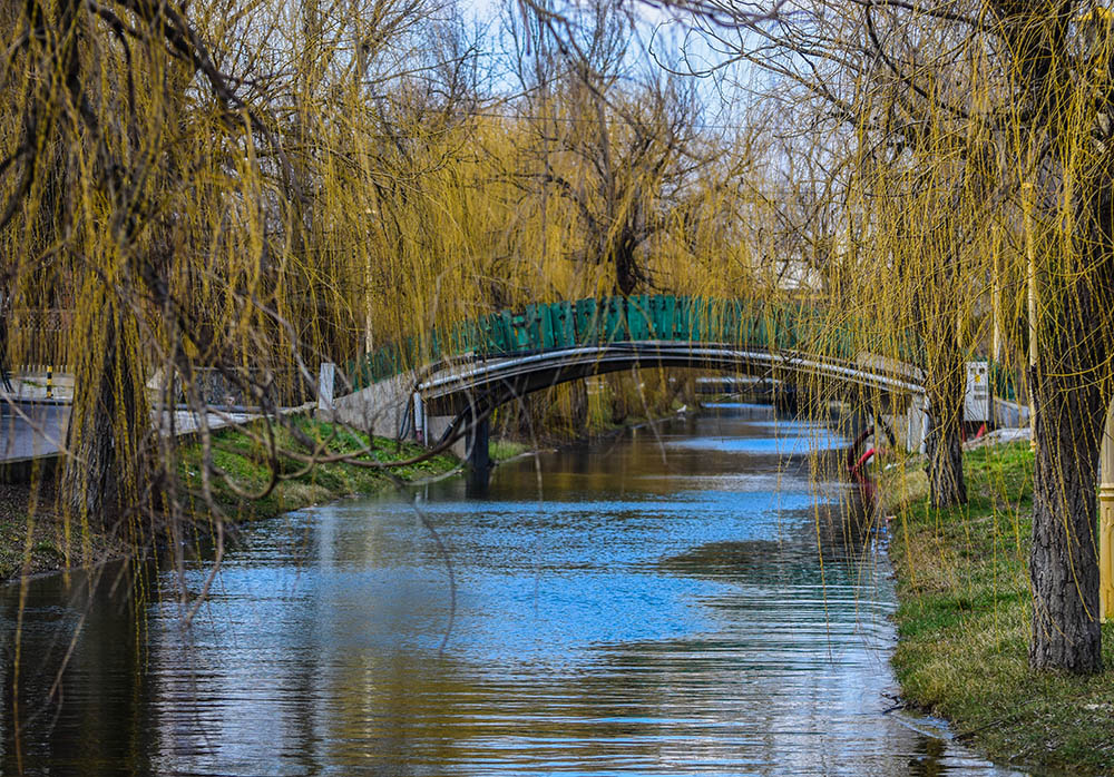 140.3. Solom Mihai. Pod peste canal (Parcul Tabacariei, Constanta)