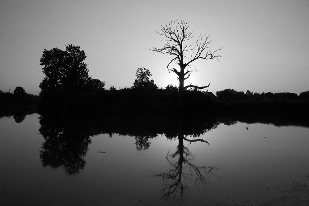 151.1. Rosu Sorin. Apus (Lacul Mogoșoaia)