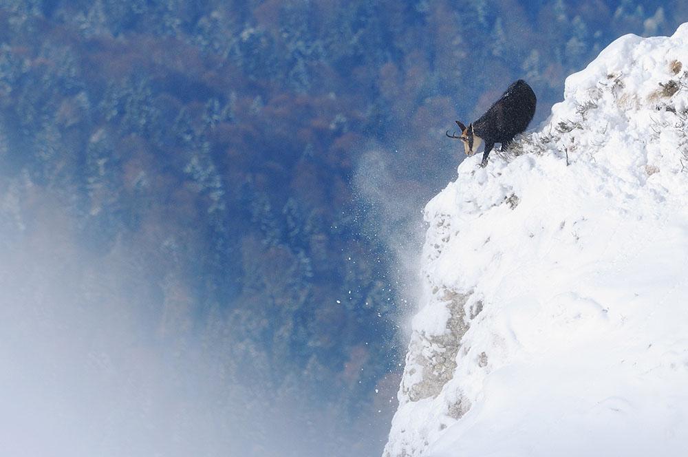 2012 – Fotoreportaj – Premiul 1 – Zoltan Gergely Naghy – Parcul Național Ceahlău (Impresii vizuale) – 3