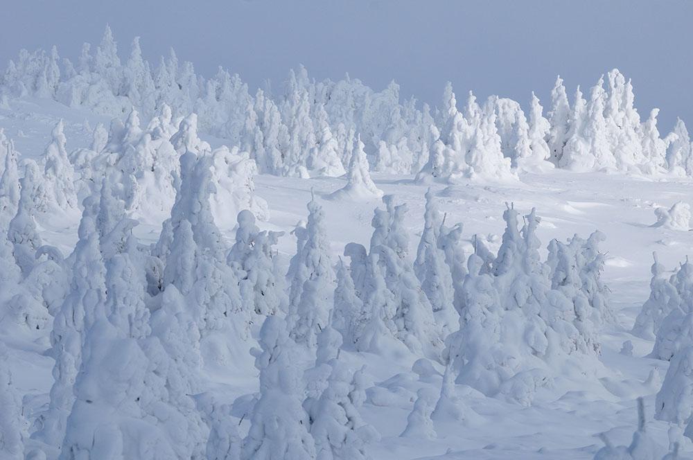 2012 – Fotoreportaj – Premiul 1 – Zoltan Gergely Naghy – Parcul Național Ceahlău (Impresii vizuale) – 4