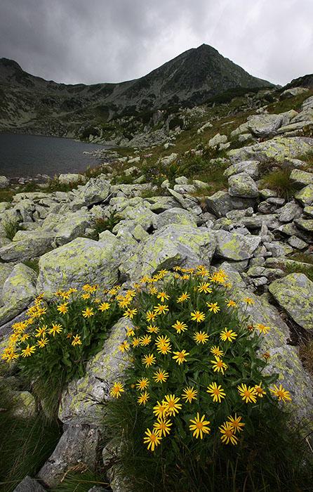 2012 – Fotoreportaj – Premiul 3 – Claudia Tănăsescu – Munții Retezat – 3