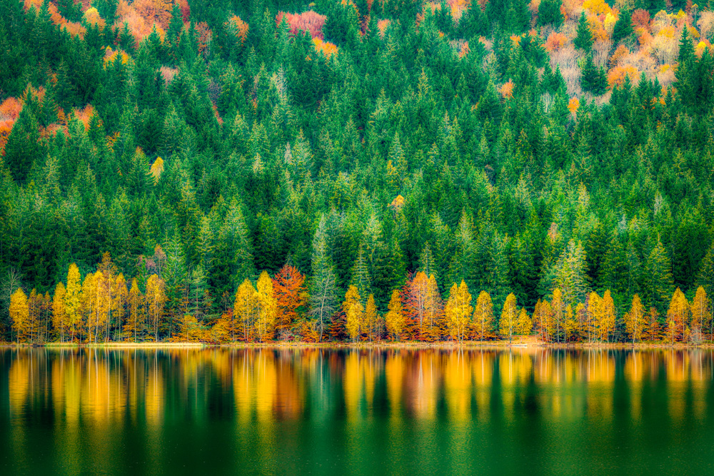 Csaba Toth. Autumn Reflection (Lacul Sfânta Ana, jud.Harghita)