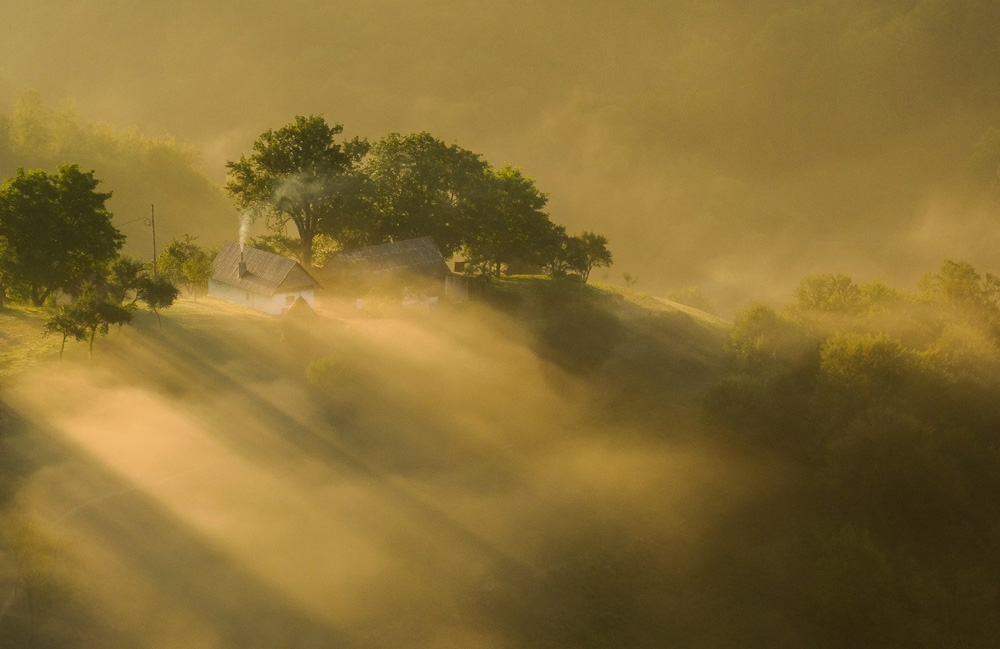 Manea George. Moment cu ceata (Holbav, Brasov)