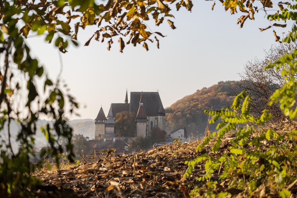 105.1. Cristea Dana. Biserica fortificata de la Biertan (Biertan, Romania)