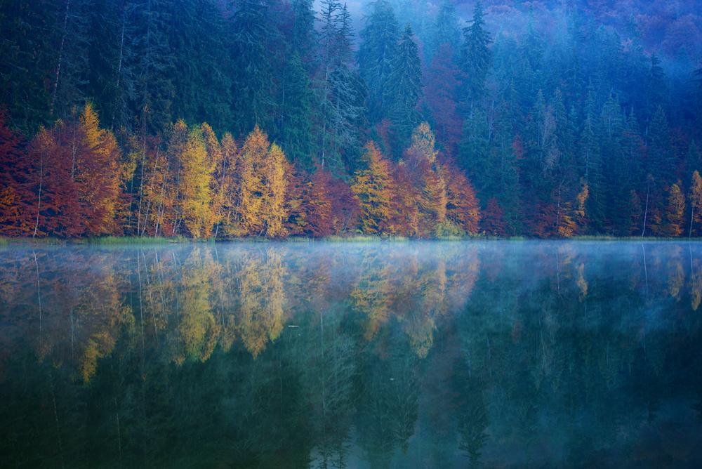 144.2. Dedu Adrian. Morning Mist (Lacul Sfânta Ana)
