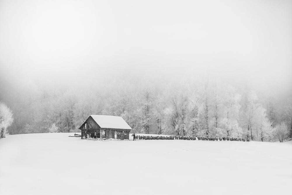 Marinescu Ștefan. Poveste de iarnă (Șirnea,jud. Brasov)