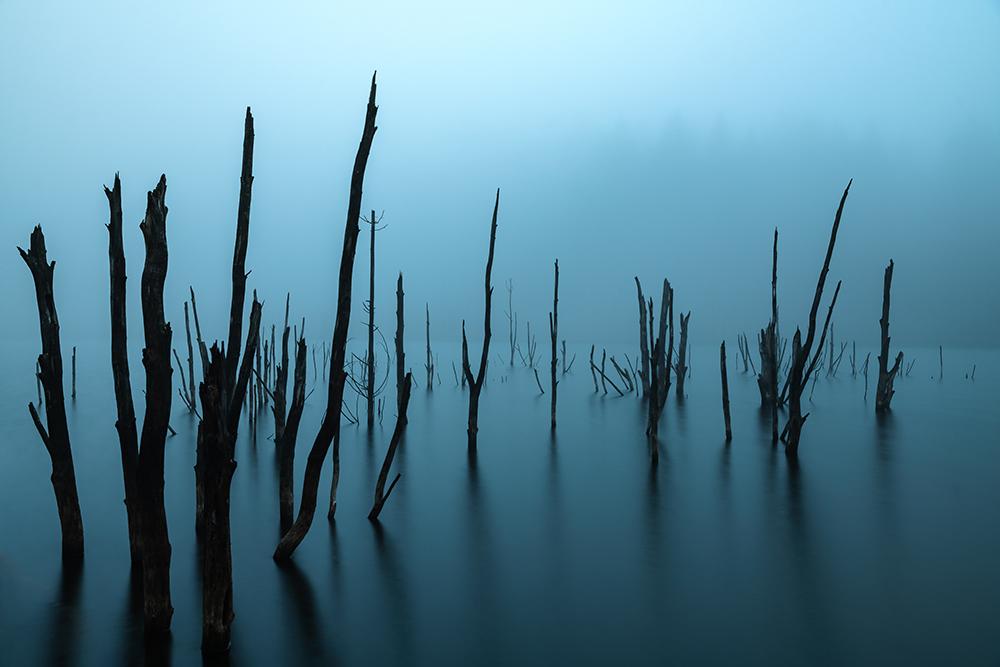 Mazilu Tudor. Liniște (Lacul Cuejdel, jud. Neamț