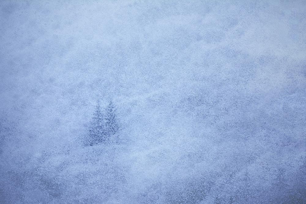 Mențiune. Secțiunea peisaj natural. Ștefan Daniel. Magie de iarna (Zarnești, jud. Brașov)