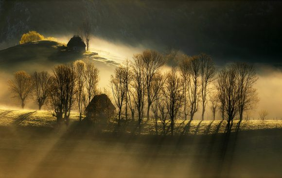Soare Laurențiu